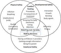 The Interplay Of Physical And Parents U0027 Perspectives On Safety In Neonatal Intensive Care A