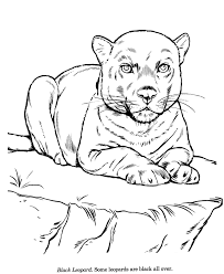 snow white coloring book colouring pages 9 animal drawings