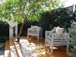 backyard shade trees home outdoor decoration