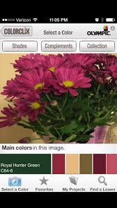 olympic paint color quiz home office color inspiration with