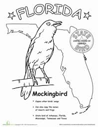 florida state bird worksheet education com