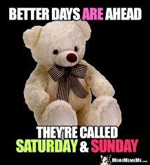 Teddy Bear Meme - humorous bears big bear hugs funny teddy bear wisdom best