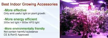 best light for plants lights for plant growth led light for plants effect led light plant