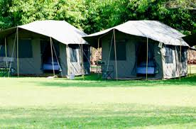 tents to rent cing tents to rent pop up hotel junk mail