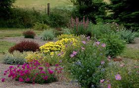 Backyard Flower Gardens by Desert Landscaping Ideas High Desert Flower Garden Desert