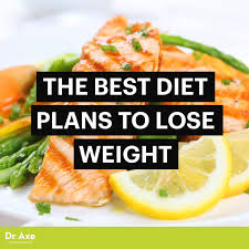 the best diet plans to lose weight dr axe
