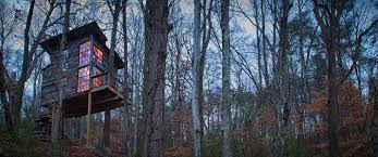 Coolest Treehouses Treetop Hideaways