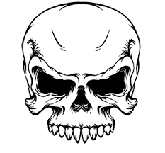 skull pictures free free clip free clip on