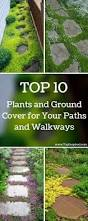 Simple Landscape Ideas by 25 Best Side Yard Landscaping Ideas On Pinterest Simple