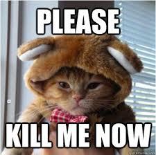 Meme Me - funny cat kill me meme meme pics photos bajiroo com