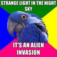 paranoid parrot memes create meme