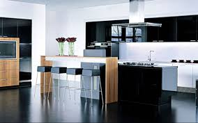 Modern Kitchen Cabinets Images Modern Kitchen Designs Archiki