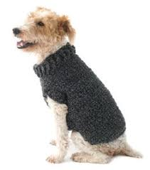 crochet pattern for dog coat the poet dog sweater is great for a dog who loves the simple things