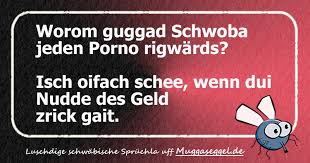 schwäbisch sprüche rigwärds gugga lustiger schwäbischer spruch muggaseggel