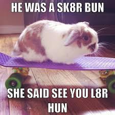 Funny Rabbit Memes - she said see you l8r hun funny rabbit meme
