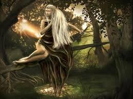 tree elves and fairies wallpapers and images desktop nexus