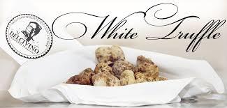italian white truffle buy italian fresh truffles due maestà