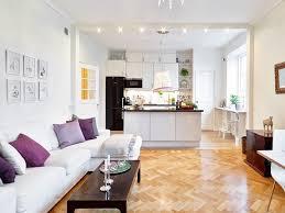 parquet cuisine ouverte 1001 conseils et idées pour une cuisine ouverte sur le salon