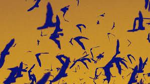 no bats no margaritas the story behind halloween u0027s ultimate