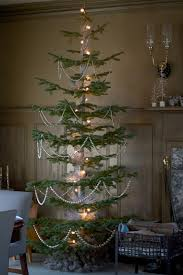 the brown room had two amazing silver tip fir trees these