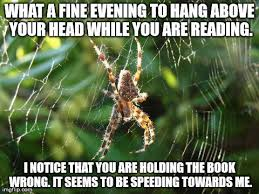 Cute Spider Memes - 23 funny spider memes weneedfun laugh pinterest funny spider