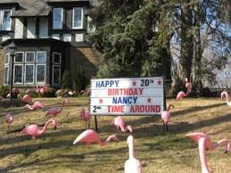 Birthday Lawn Decorations 3d Pink Flamingos Penguins Lawn Signs Toronto Birthday