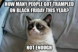 Clean Cat Memes - 25 hilarious grumpy cat memes that sum up a cat s tough life