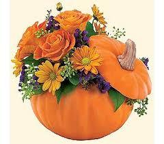 halloween flowers delivery fort lauderdale fl brigitte u0027s flower shop