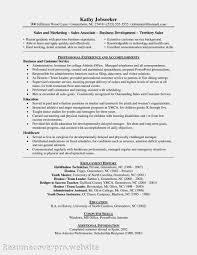 sample resume business intelligence developer best resumes