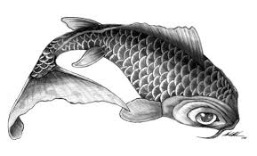 final koi fish drawing by gorillastrations on clipart library