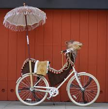 Camel Halloween Costume Picks Bike Halloween Costumes Public Opinion