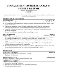 Sample Federal Budget Analyst Resume program analyst sample resume resume templates