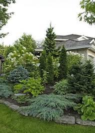 70 best image ideas for evergreen landscape front yard front
