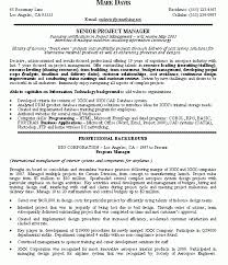 resume it project manager resume samples better written resumes