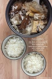 membuat martabak di rice cooker 26 best indonesian nasi images on pinterest indonesian cuisine