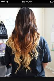 hair styles brown on botton and blond on top pictures of it the 25 best blonde underneath ideas on pinterest blonde