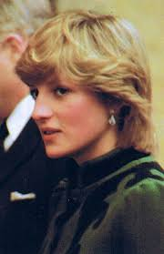 princess diana lady diana royal family pinterest