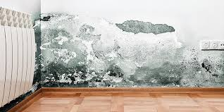Mold In Bathtub 4 Ways To Remove Mold From Your House