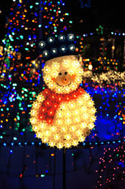 Outdoor Christmas Decorations Halifax by 438 Best Christmas Lights Images On Pinterest Holiday Lights