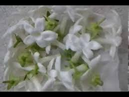 Stephanotis Flower Fresh Stephanotis Flowers Wedding Flowers Youtube