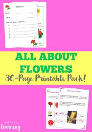 flower printables for kids look we u0027re learning
