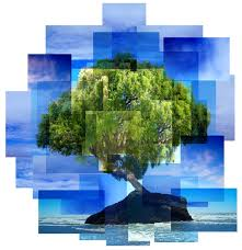tree montage by evil wench on deviantart