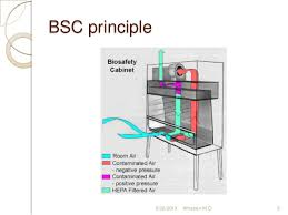 Bio Safety Cabinet Biosafety Cabinets Medical Microbiology Biosafety