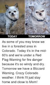 Colorado Weather Meme - today tomorrow as some of you may know we live in a forested area in