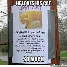 Lost Cat Meme - lost cat by al3xc0j93 meme center