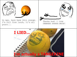 Meme I Lied - i lied i m actually a tangerine facebook