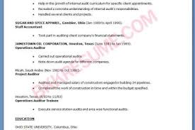 Auditor Sample Resume by Sensational Internal Resume 14 Internal Auditor Resume Samples