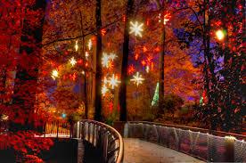 Botanical Gardens Atlanta Lights 6 Best Places To See Lights In Atlanta Gafollowers