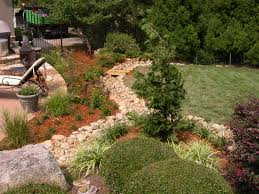 drainage evergreen landscaping georgia