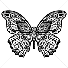 intricate butterfly design vector image 1566442 stockunlimited